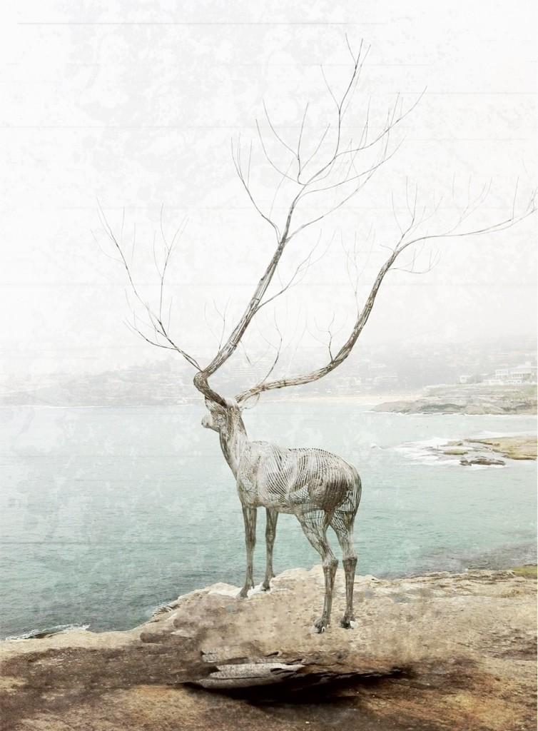 Kris Torma - Deer
