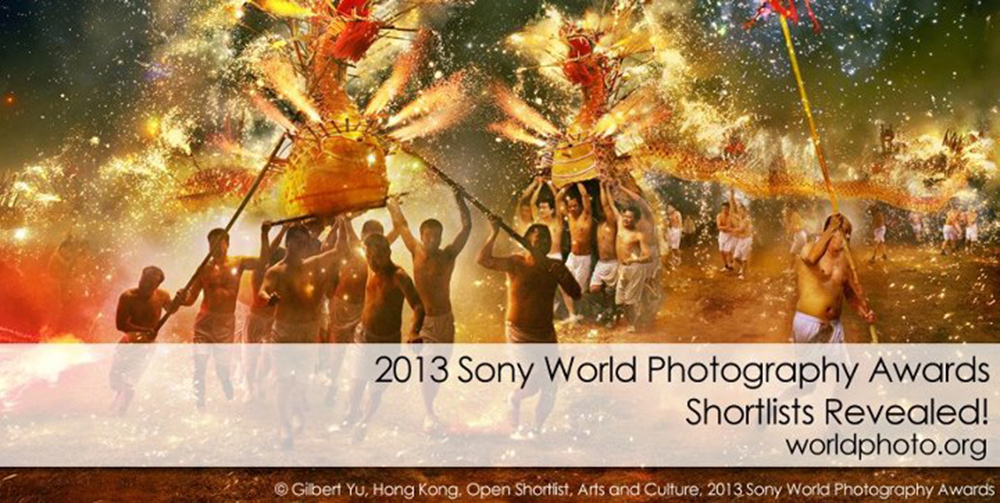 WPO, World-photo-organization, Sony-World-photography-awards, 2013