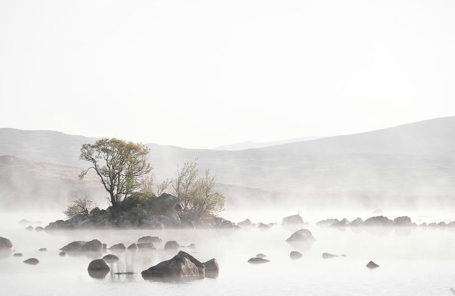 david-eustace, highland-heart