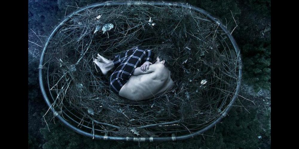 Bird-Nest, Reddit, Depression, Photography, Christian-Hopkins