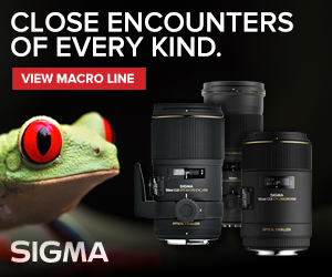 sigma, sigma-photo, sigma-corporation-of-america, macro, photography, lenses, cameras, deals