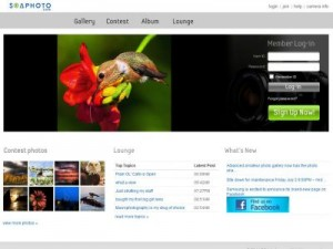 New-clients, photography, photographer, photographers, photos, photo, LinkedIn, Agency-access, Facebook, Twitter, Google+, photo-contest-websites, Redbubble, Pinterest, Flickr, Tumblr, job-sites, websites, blogs, advertising