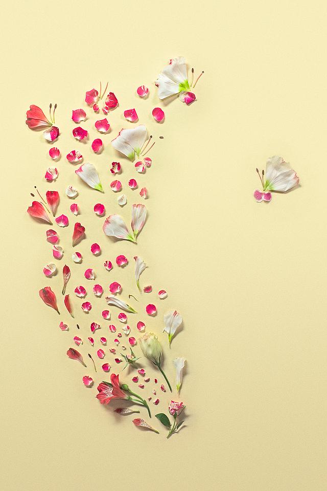 Rose, Eustoma, Peruvian Lily, Hydrangea