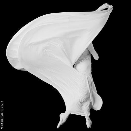 howard-schatz, beverly-ornstein, schatz-ornstein-studio, fine-art-photography, dance-photography
