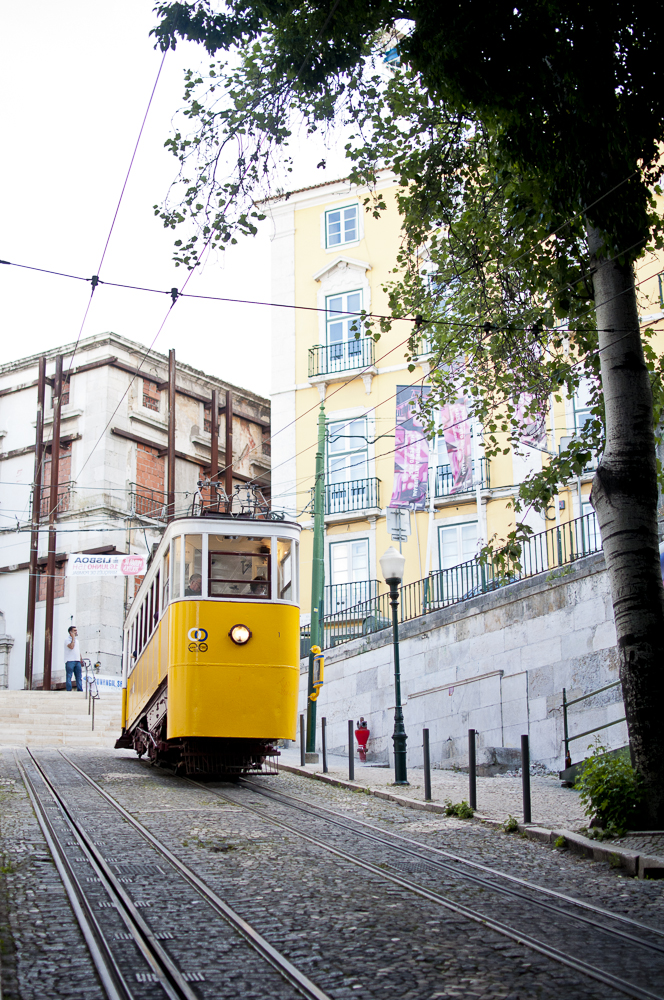 Sivan Askayo-Lisbon Resource -28