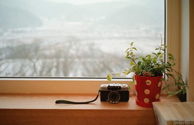 dreaming-camera-cafe