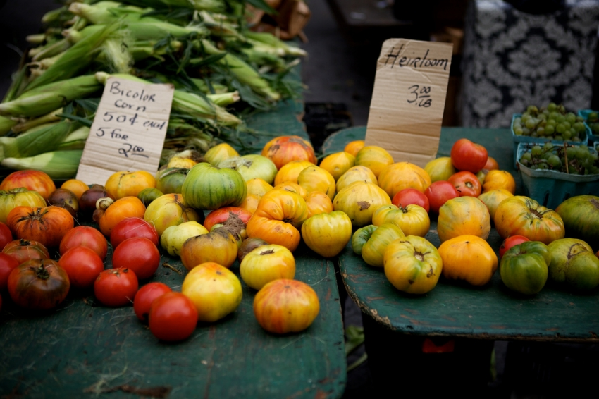 nyc-farmers-market, nyc, new-york, photography, resources, thepropstylist, local