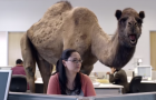 5 Commercials That Got It Right