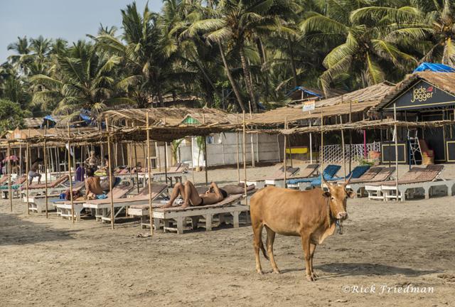 Goa India.