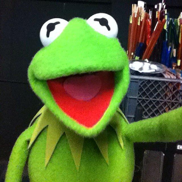 Muppet-Selfie