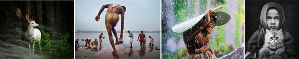 Images L - R: (c) Georg May, Germany (c) Nick Ng, Malaysia (c) Andrew Suryono, Indonesia (c) Arief Siswandhono, Indonesia. All images: Entries, Open Competition, 2015 Sony World Photography Awards.