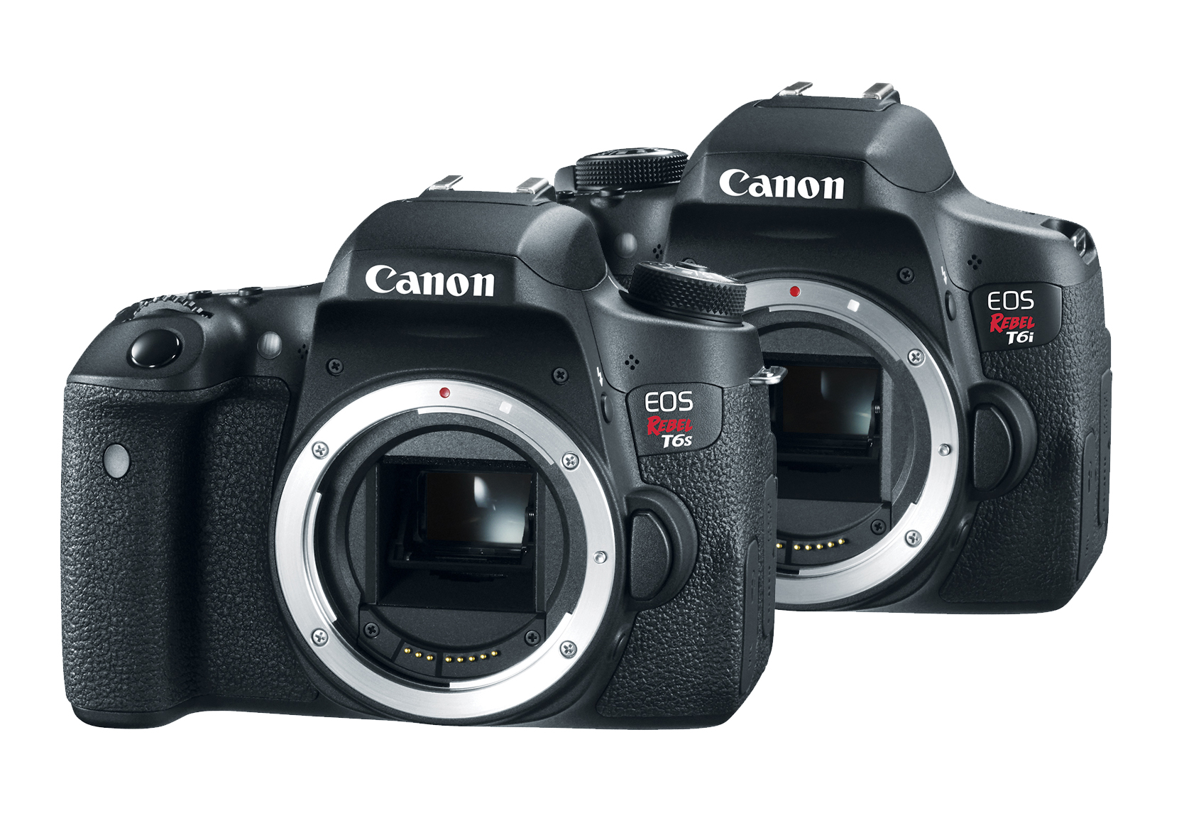 Canon unveils two new rebel cameras the t6s and t6i for New camera 2015