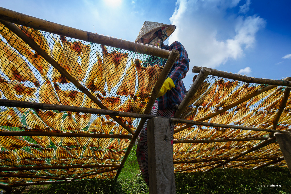 23. drying fish in Mekong Delta, Vietnam