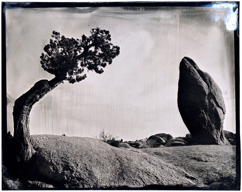PHOTOGRAPHER-JAMES-WEBER-WETPLATE-ROADTRIP-00531