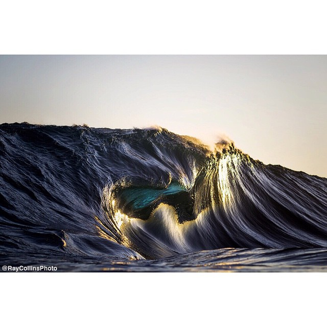 © Ryan Collins Photo