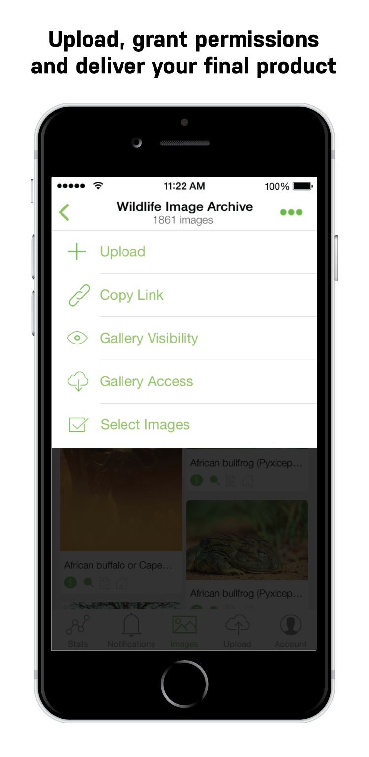 ps-mobile-app-assets-4