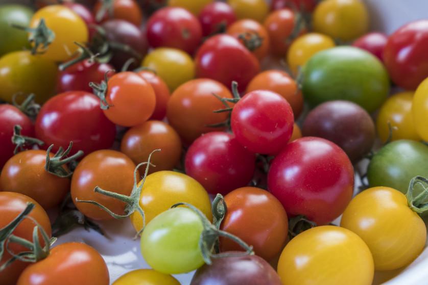 Sony a7R II- Tomatoes