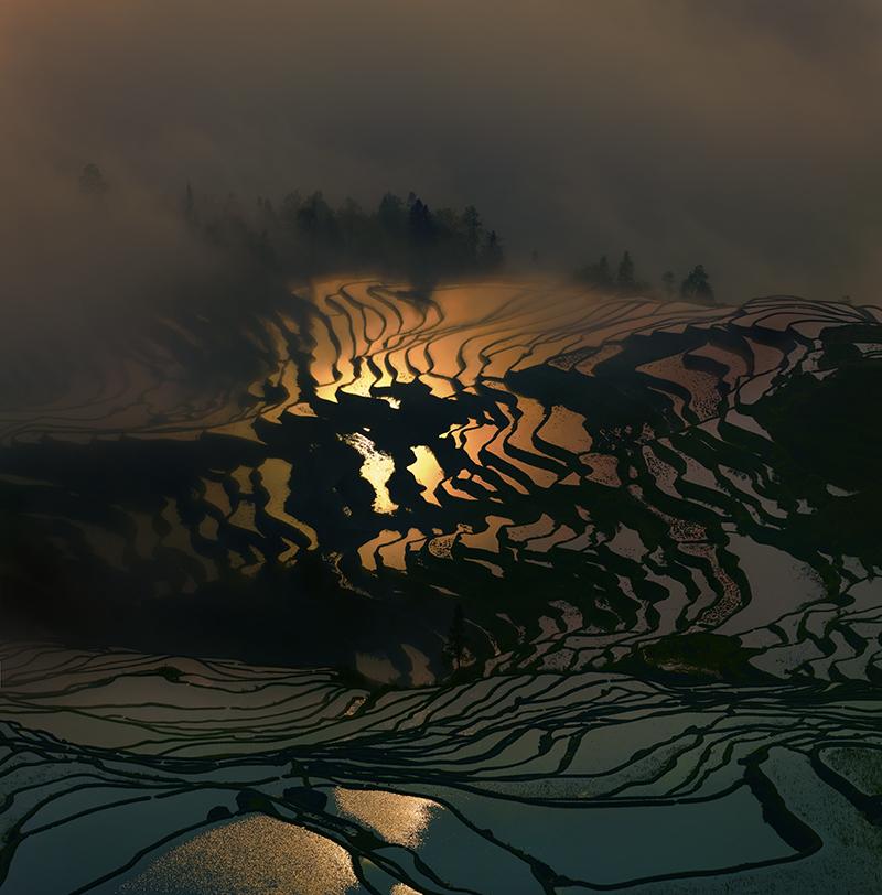 © Thierry Bornier