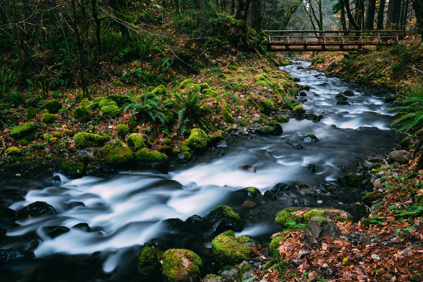 How to Use Long Exposures to Expertly Photograph Landscapes
