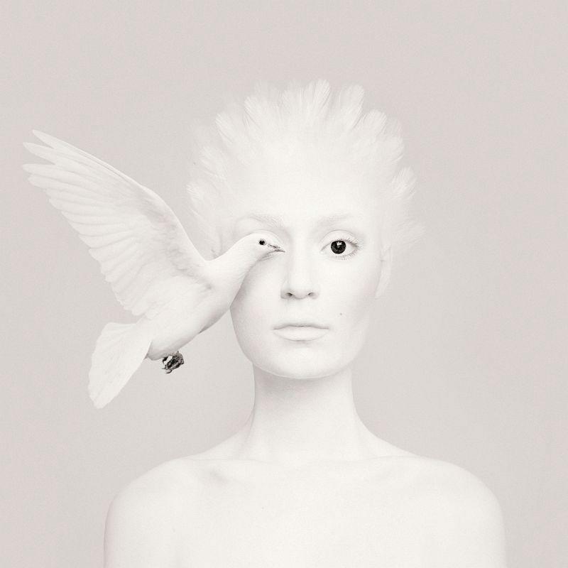 Animal-Eyes-Series-Flora-Borsi-2