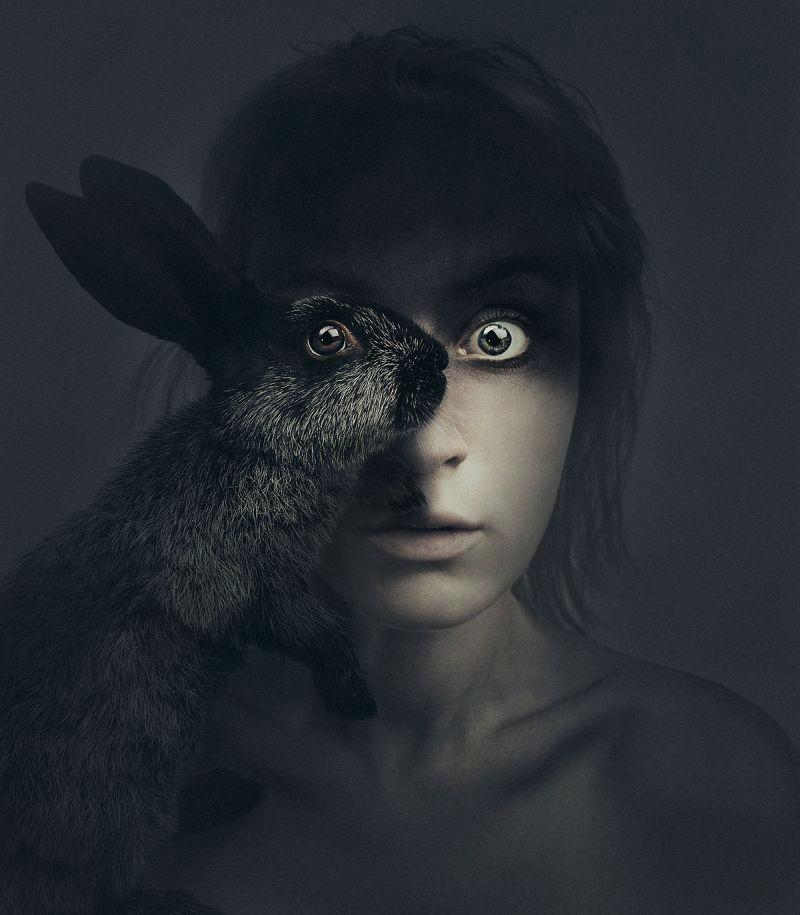 Animal-Eyes-Series-Flora-Borsi-6