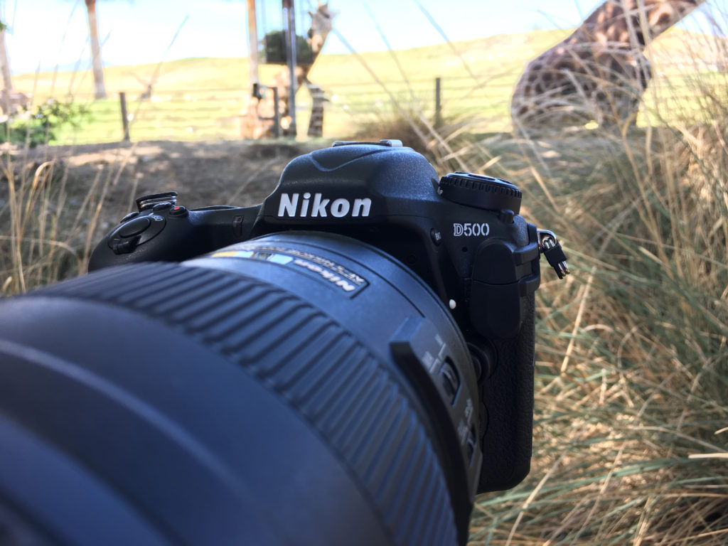 Nikon D500 First Impressions Review