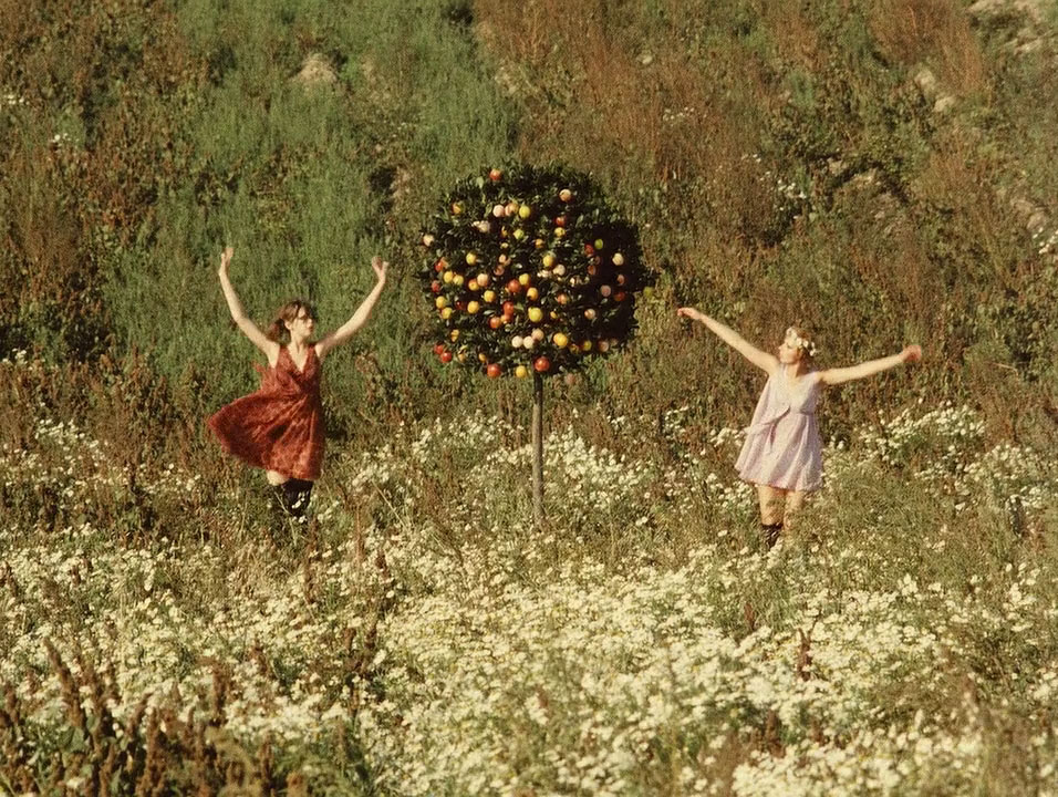 visually-stunning-films, daisies, cinematography, lighting, film-coloring, movies