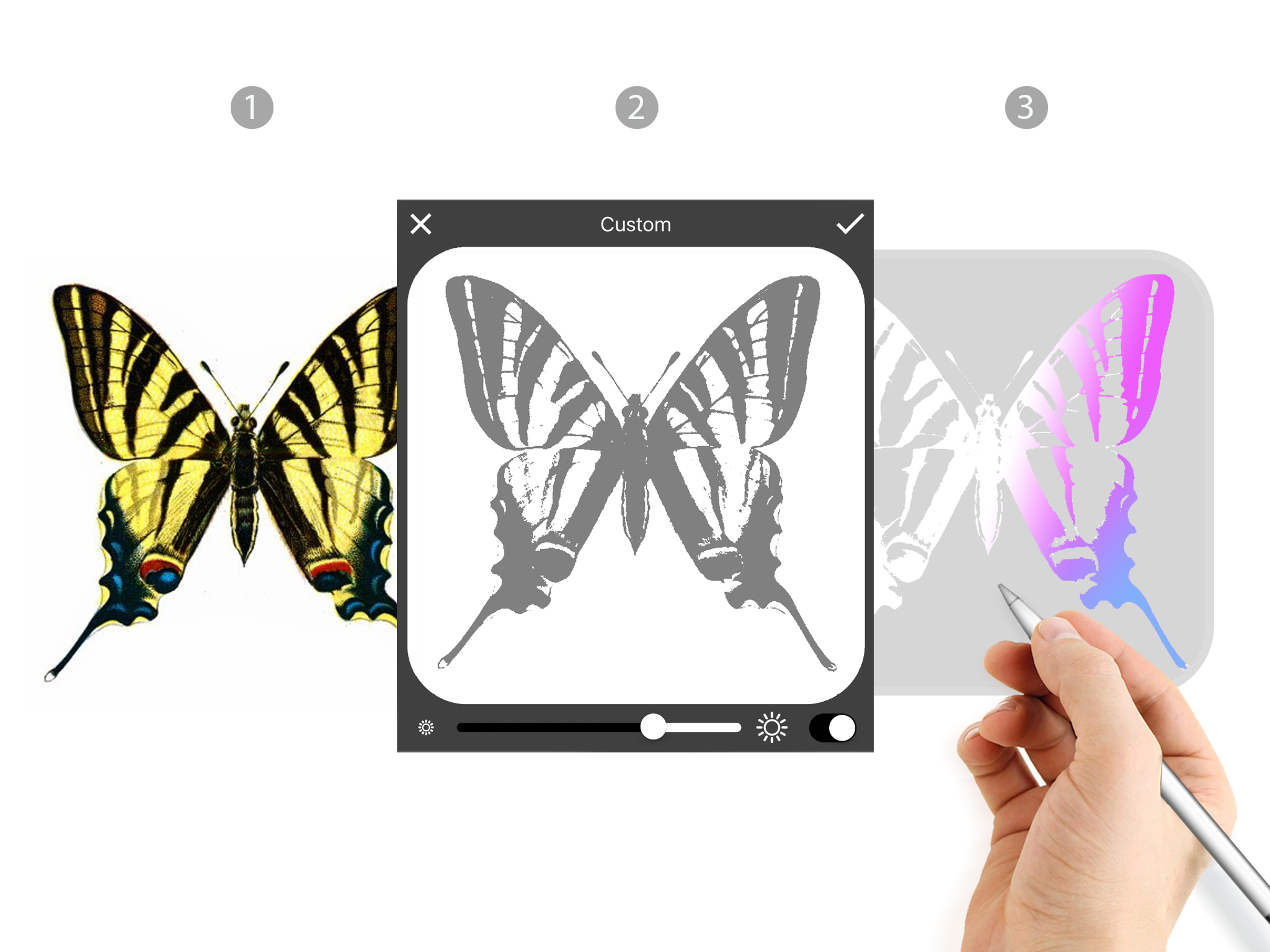 04_Morpholio Stencil_Diagram_01_Butterfly