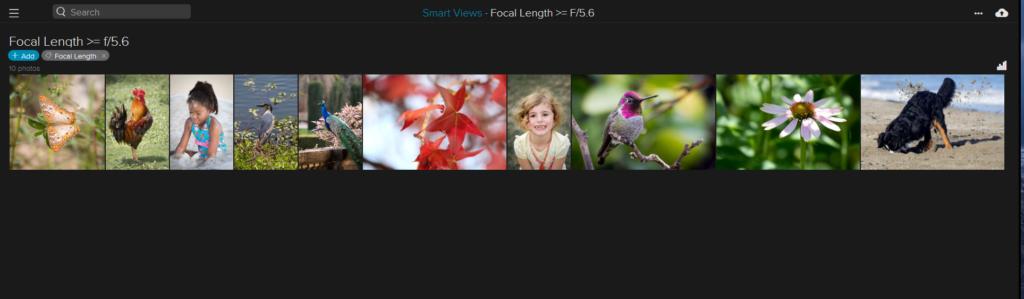 webapp-smartviews2