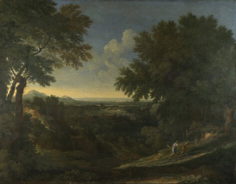 landscape, trees, balance