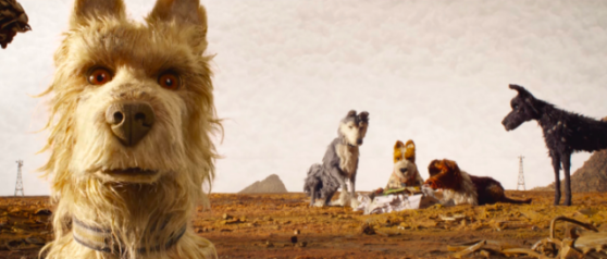 "Take A Look At The Photographs That Inspired ""Isle of Dogs"""